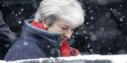 Theresa May utanför 10 Downing street TOLGA AKMEN / AFP
