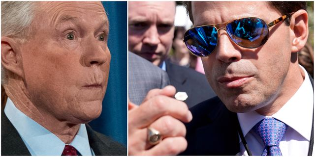 Jeff Sessions/Anthony Scaramucci. TT