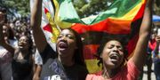 Studenter vid University of Zimbabwe i huvudstaden Harare. - / AFP