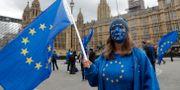 En kvinna protesterar mot brexit i september 2017.  Matt Dunham / TT NYHETSBYRÅN/ NTB Scanpix