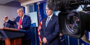 Donald Trump och Mike Pence på en pressträff inatt. TOM BRENNER / TT NYHETSBYRÅN