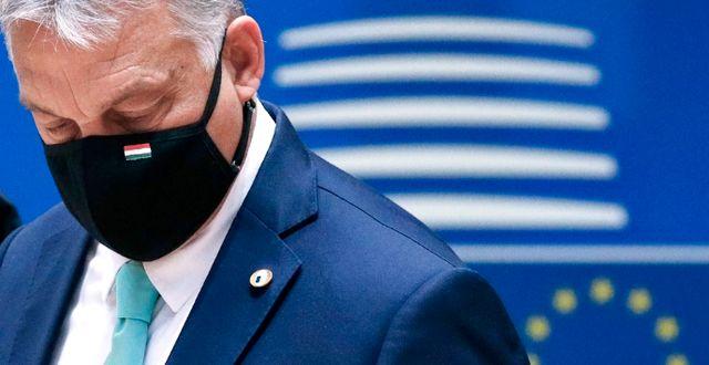 Arkivbild. Ungerns premiärminister Viktor Orban.  Francois Lenoir / TT NYHETSBYRÅN