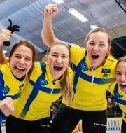 Det svenska laget jublar. PETTER ARVIDSON / BILDBYRÅN