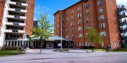 Berga i Solna. Janerik Henriksson/TT / TT NYHETSBYRÅN