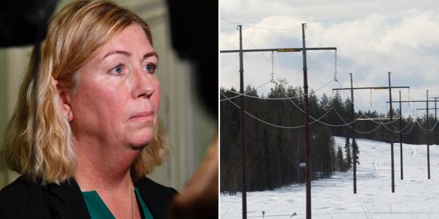 Ulla Sandborgh, generaldirektör på Svenska kraftnät.  TT