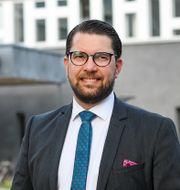 Jimmie Åkesson (SD).  Jonathan Näckstrand/TT / TT NYHETSBYRÅN