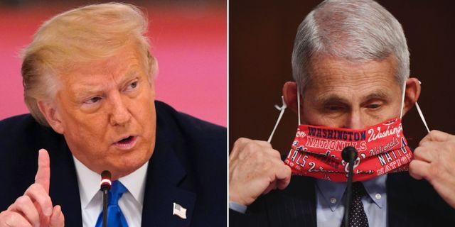 Donald Trump/Anthony Fauci TT/AP