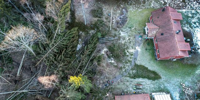 Arholma i Norrtäljes skärgård drabbades hårt av stormen Alfrida. Anders Wiklund/TT / TT NYHETSBYRÅN