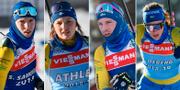 Sebastian Samuelsson, Linn Persson, Jesper Nelin och Hanna Öberg. TT