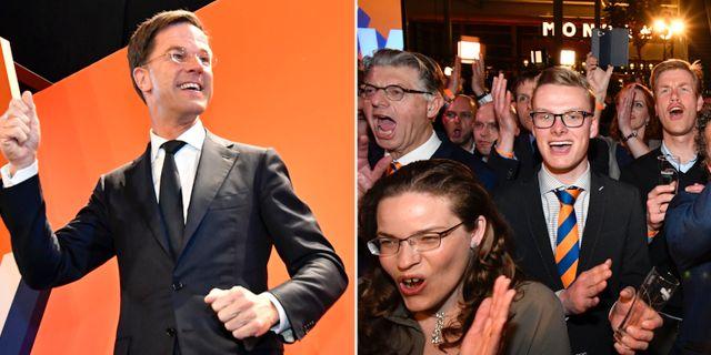 Mark Rutte och hans anhängare vid valvakan.  AP
