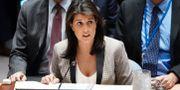 Haley i FN på måndagen CARLO ALLEGRI / TT NYHETSBYRÅN