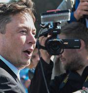 Elon Musk på besök i tyska Grünheide utanför Berlin, där Teslas Gigafactory ska byggas.  Patrick Pleul / TT NYHETSBYRÅN