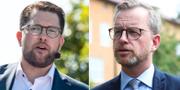 Jimmie Åkesson (SD) och Mikael Damberg (S). Arkivbilder. TT