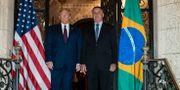 Donald Trump och Jair Bolsonaro. Alex Brandon / TT NYHETSBYRÅN