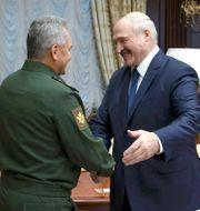 Aleksandr Lukasjenko (till höger) hälsar på Rysslands försvarsminister Sergej Sjojgu vid onsdagens möte i Minsk.  Maxim Guchek / TT NYHETSBYRÅN
