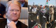 Lars Adaktusson (KD) och bild från måndagens protester i Gaza. TT.