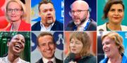 Några av de svenska parlamentarikerna: Övre raden: Heléne Fritzon (S), David Lega (KD), Charlie Weimers (SD), Abir Al-Sahlani (C). Nedre raden: Alice Bah Kuhnke, Tomas Tobé (M), Malin Björk (V) och Karin Karlsbro (L).