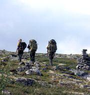 Arkivbild: Norska jägare på väg upp på fjället för jakt Herskedal, Kjell / TT NYHETSBYRÅN