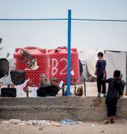 Ett barn i al-Hol-lägret Baderkhan Ahmad / TT NYHETSBYRÅN