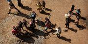 Barn i Uganda. Ben Curtis / TT NYHETSBYRÅN