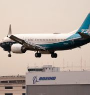 Arkivbild: Ett Boeing 737 Max-plan testflygs av den amerikanska flygmyndigheten FAA:s chef Steve Dickson i Seattle, 30 september 2020.  Elaine Thompson / TT NYHETSBYRÅN