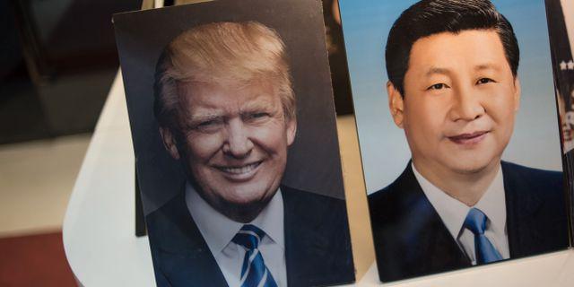 Porträtt av Donald Trump och Xi Jinping i en affär i Peking.  FRED DUFOUR / AFP