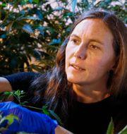 Sue Ogrocki / TT NYHETSBYRÅN