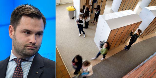 Erik Bengtzboe, utbildningspolitisk talesperson för M.  TT