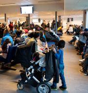 Arkivbild. Flyktingar vid Migrationsverkets kundcenter på Agnesfridsvägen.  Drago Prvulovic/TT / TT NYHETSBYRÅN