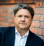 Brun.  Claudio Bresciani/TT / TT NYHETSBYRÅN