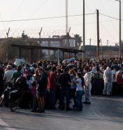 Migranter på grekiska ön Lesbos. Petros Giannakouris / TT NYHETSBYRÅN