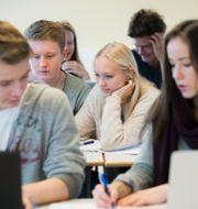 Ungdomar i gymnasiet. Arkivbild. Roald, Berit / TT NYHETSBYRÅN