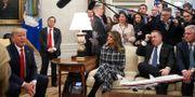 Donald Trump under mötet i Ovala rummet där han tog emot Greklands premiärminister Kyriakos Mitsotakis. JONATHAN ERNST / TT NYHETSBYRÅN