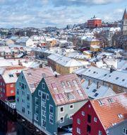 Trondheim.  Gorm Kallestad / TT NYHETSBYRÅN