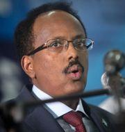 Somalias president Mohamed Abdullahi Mohamed . Farah Abdi Warsameh / TT NYHETSBYRÅN