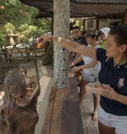 Besökare på parken Hacienda Napoles. Ivan Valencia / TT NYHETSBYRÅN