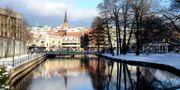 Borås Amjad Sheikh/Wikipedia