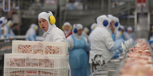 Anställda vid en köttfabrik i Brasilien. Arkivbild. Eraldo Peres / TT NYHETSBYRÅN