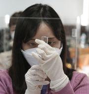 En vårdarbetare över sig att ge vaccin i Sydkorea, där vaccineringen mot covid-19 väntas inledas i slutet av februari. Ahn Young-joon / TT NYHETSBYRÅN