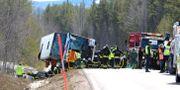 Bild från bussolycka utanför Sveg i april 2017. Arkivbild. Nisse Schmidt/TT / TT NYHETSBYRÅN