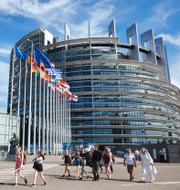 EU-parlamentet (t v), Ursula von der Leyen (t h). TT