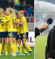 Sverige firar efter vinsten / Marcus Johannesson Bildbyrån