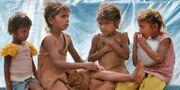 Arkiv. Barn vid ett tältläger i Bangalore. AIJAZ RAHI / TT / NTB Scanpix