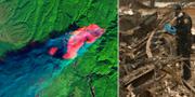Satellitbild över den massiva branden. På marken pågår sökandet. TT