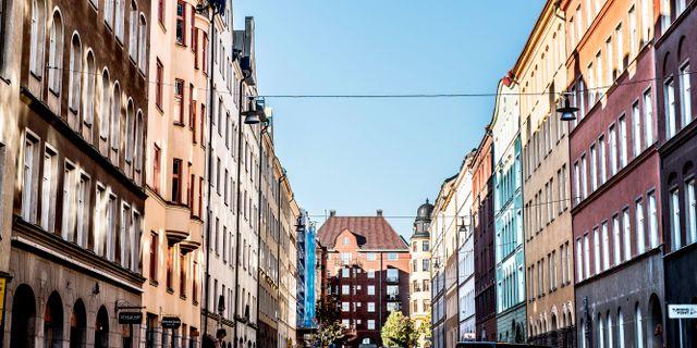 Arkiv. Tomas Oneborg/SvD/TT / TT NYHETSBYRÅN