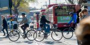 Cyklister i Stockholm/arkiv.  Fredrik Sandberg/TT / TT NYHETSBYRÅN