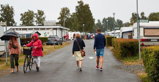 Arkivbild. Tobisvik Camping i Simrishamn.  Anders Bjurö/TT / TT NYHETSBYRÅN