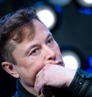 Elon Musk. BRENDAN SMIALOWSKI / TT NYHETSBYRÅN