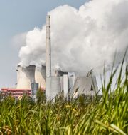 Tyskt kolkraftverk. Martin Meissner / TT NYHETSBYRÅN