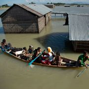 In this July 31, 2016, file photo, a flood-affected family with their goats travel on a boat in the Morigaon district, east of Gauhati, northeastern Assam state, India. Anupam Nath / TT NYHETSBYRÅN